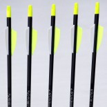 Arrows Easton Gamegetter black
