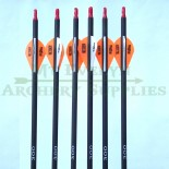 Arrows Carbon 300 Spine Hunting