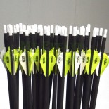 Arrows Carbon 600 Spine Hunting
