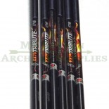 Arrows Easton 1816 Tribute
